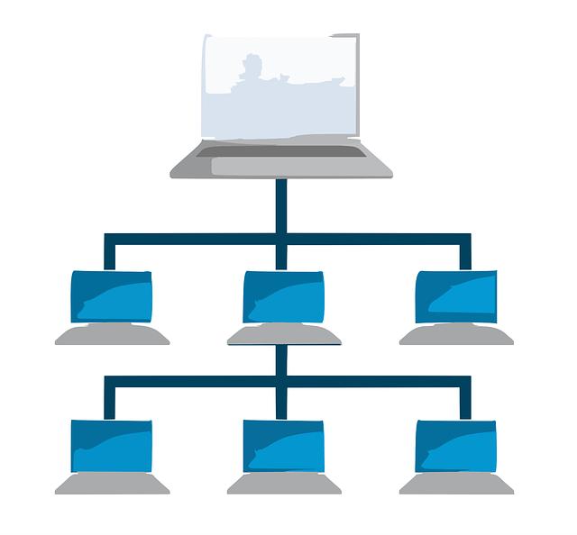 Les étapes d'installation d'un réseau en entreprise